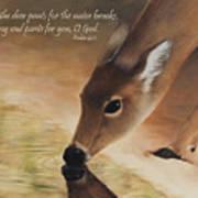 As The Deer Verse Art Print by Becky West