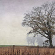 As The Fog Sets In Art Print
