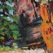 Ashdown Gorge Of Zion Art Print