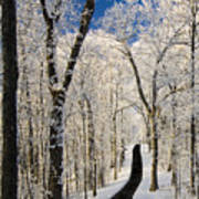 Asheville Nc - Winter Stroll Art Print