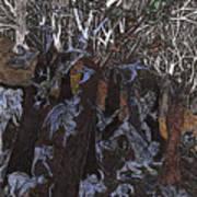 Asil In Shitaki Forest Art Print by Al Goldfarb