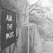 Ask The Dust Art Print