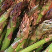 Asparagus Tips 2 Art Print