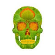 Aspen Leaf Skull 10 Art Print