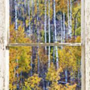Aspen Tree Magic Cottonwood Pass White Farm House Window Art Art Print