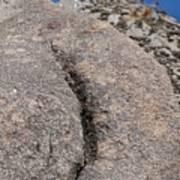 Ass Rock New Mexico Art Print