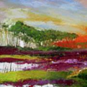 Assateague Sunset Art Print