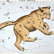 Astronomy: Ursa Major Art Print