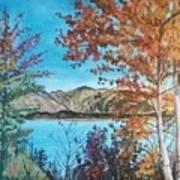Fall Aspens Art Print