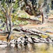 At The Water's Edge Art Print