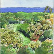 Atiu Lake View Art Print