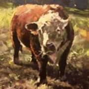 Atsa Lotta Bull Art Print