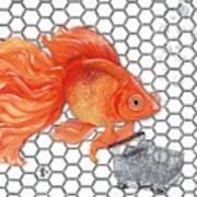Attention Goldfish Shoppers Art Print
