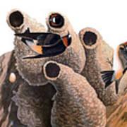 Audubon: Swallow Art Print