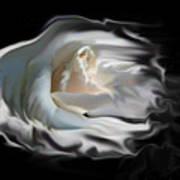 Aurora Rosealis Art Print