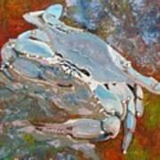 Austin Blue Crab Art Print