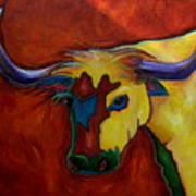 Austin Longhorn Art Print