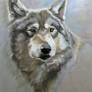 Austin's Wolf Art Print