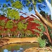 Australian Billabong Art Print