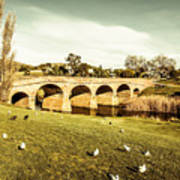 Australian Bridges Art Print