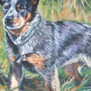 Australian Cattle Dog 1 Print by Lee Ann Shepard