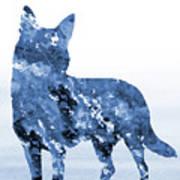 Australian Kelpie-blue Art Print