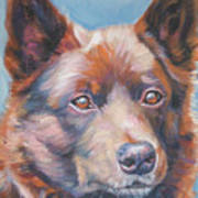 Australian Kelpie Art Print