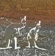 Australian Red Kangaroos Art Print