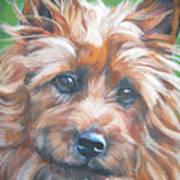 Australian Terrier Art Print