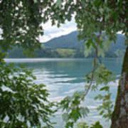 Austrian Lake Through The Trees Art Print