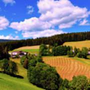 Austrian Rural Forest Vista Art Print