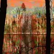 Autmn Waters Art Print