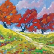Automn Trees Art Print