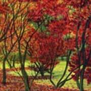 Autum Red Woodlands Painting Art Print