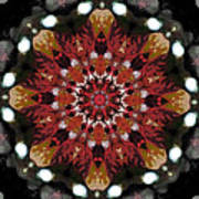 10446 Autumn 01 Kaleidoscope Art Print