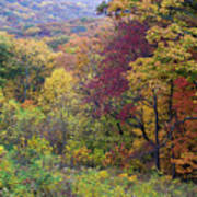Autumn Arrives In Brown County - D010020 Art Print