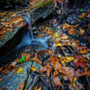 Autumn At A Mountain Stream Art Print