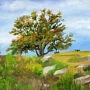 Autumn At Gettysburg Art Print