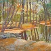 autumn at Kenoza Art Print