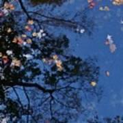 Autumn At The Lake Art Print
