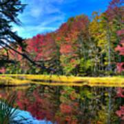 Autumn At The Pond Art Print