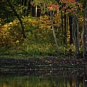 Autumn At Wrights Pond Art Print