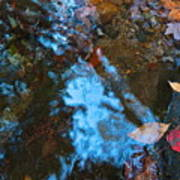Autumn B 2015 131 Art Print