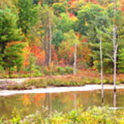 Autumn Beaver Pond Art Print