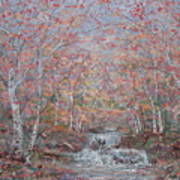 Autumn Birch Trees. Art Print
