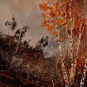 Autumn Birches  Art Print