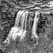 Autumn Blackwater Falls Bw Art Print