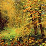 Autumn Bliss Of Color Art Print