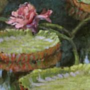Autumn Blossom Art Print