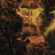 Autumn By The Argyle Creek Art Print